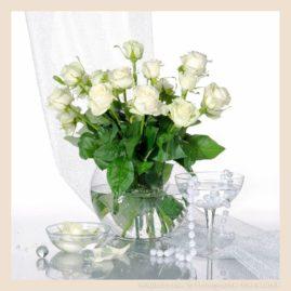 белые розы натюрморт светлые тона