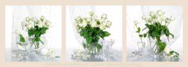 три натюрморта белые розы