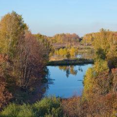 осень, водоем, деревья