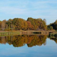 озеро, осень, деревья