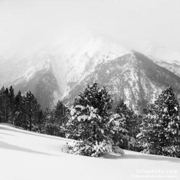 черно-белое фото, горы зимой, пейзаж, природа
