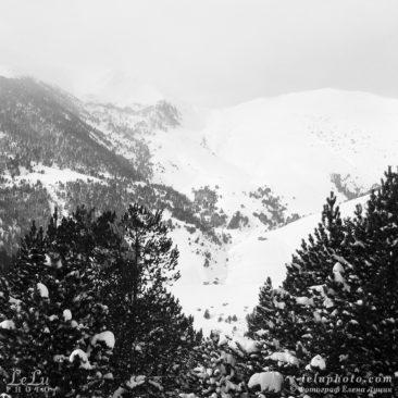 черно-белое фото, зимой в горах, пейзаж