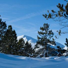горы, ели, зимний пейзаж