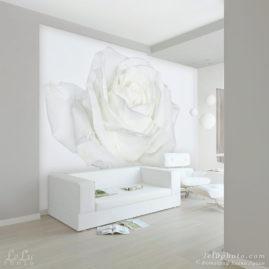 фотообои с белой розой в интерьере