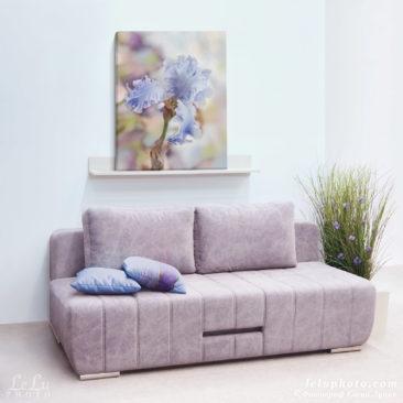ирис, цветок, фотокартина в интерьере