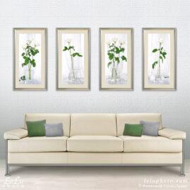 натюрморты с белыми розами