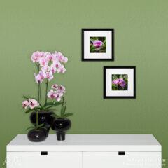 Композиция «Орхидеи в лунном свете» из двух фотокартин.
