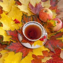 Разноцветные листья клена, яблоки и чашка чая.