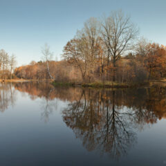 Осенний пруд в Середниково, зеркальная гладь воды