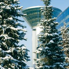 здание Дома Правительства Московской области, зима, елки в снегу