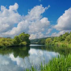 река, деревья, облака, небо, трава