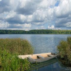 озеро, лодка, высокая трава, полоса леса