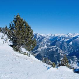 вершины гор, зимний пейзаж, ели