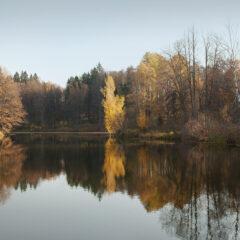 Осенний пейзаж, Середниково, зеркальная гладь воды